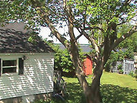 Beautiful cottage near PARLEE BEACH ! GREAT PRICE