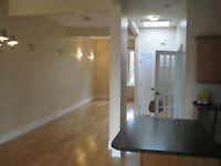 Montreal GRIFFIN TOWN adj;canal, p st Charles stylish 900sf LOFT