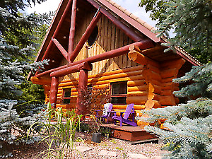 Unique memory this year! Log cabin , $298/n Jul17-19
