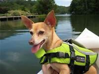 OUTWARD HOUND LIFEJACKET FOR SMALL SIZE DOG