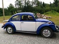 1974 VW Beetle looking for new home
