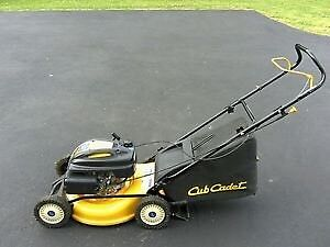 Wanted: rear bag for Cub Cadet model 18m mower