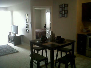 Free rent till Dec 15 2bed 2bath modern condo available now Edmonton Edmonton Area image 3