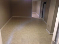 Basement Apartment Newly Renovated - All Inclusive + Internet