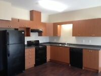 Awesome Incentives in Brand New 2 Bd in MacTaggart!      Watch