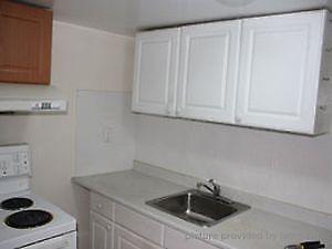 1 Bedroom + Den Basement Apartment at Dufferin & Davenport