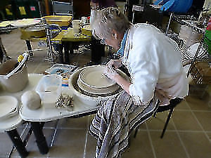 Pottery Classes: Friday Morning Bird Throwing Kingston Kingston Area image 3