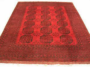 Antique Afghan Rugs