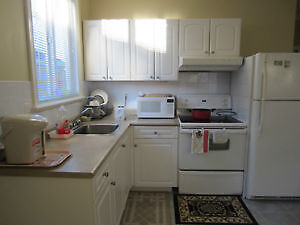 clean suite for rent
