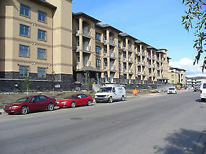 New 2 bedrooms condo for rent