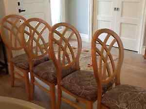 Four Dining Chairs with POTENTIAL!!!