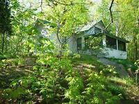 Island Cottage for Rent in Rideau Lakes Area