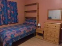 AVAILABLE GREAT HOMESTAY - LARGE ROOM/PRIVATE BATH