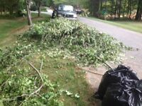 TREE REMOVAL 20% OFF ALL SERVICES/ GTA Disposal.