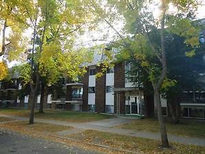 GORGEOUS One Bedroom Condo just off Whyte Avenue Edmonton Edmonton Area image 9