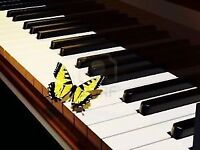 ☀☀QUALITY PIANO LESSONS VARIOUS LOCATIONS ADULTS SENIORS WELCOME