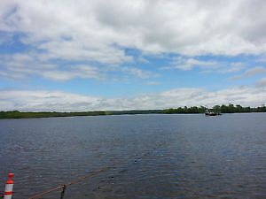 900 feet on Saint John River~Paradise Found~27 acres~Home~Barns