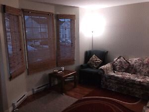 Furnished Room Close to MUN Avalon mal & Stores POU included St. John's Newfoundland image 6