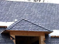 Roof Repairs/Fix Leaks/New Construction/Insured/Wcb