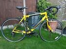 Apollo tdf gents Road bike