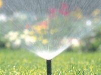 Sprinkler Blow Out Reasonable Rates.