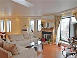 VERY LARGE FULLY FURNISHED CONDO NEAR ATWATER MARKET AND METRO