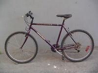 Vélo specialized. en bon etat et mise au point c'est fait.