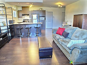GREAT! One Bedroom Spacious Open Concept Condo In Du Plateau!!