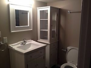 Newly renovated basement suite in King Edward park