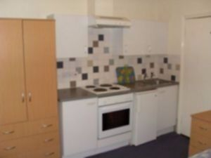 Amazing double bedsit with shared garden (GAS BILLS INCLUDED!!)