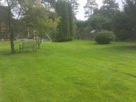 Gardener work wanted (Solihull, Dorridge, Lapworth, knowle, wood end, tanworth in arden, area)