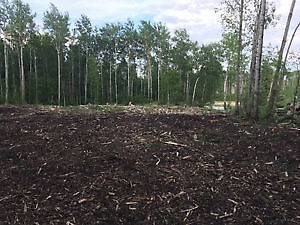 Tree Mulching, Land Clearing, Brush Cutting Strathcona County Edmonton Area image 4