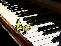 ☀☀PIANO LESSONS VARIOUS LOCATIONS ANY AGE ANY LEVEL
