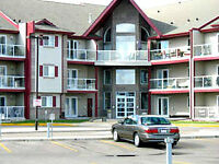 SAFE!!  SECURE!!  UPSCALE BUILDING!!  AVAILABLE AUG 1