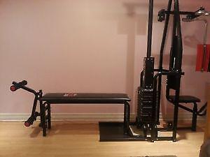York 2001 universal weight machine with pec deck