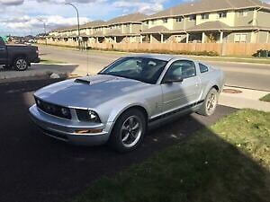2006 Ford Mustang LowKM