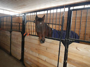 horse boarding/stable