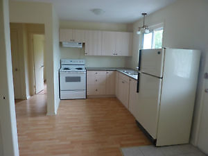 Renovated 3 BDR Apartment, Orleans - $1,195/month
