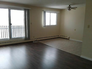 LEDUC! 3 bedroom 2 FULL bath, adult building! Free Telus!