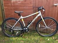 Carrera LTD Road Bike