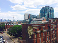 Downtown West condos for sale, 2 bed condo 300K, 2 bed loft 330K