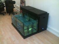 A fish tank with a difference - would be a great garden feature or unusual fish tank with seat area