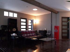 Grand 4 1/2 style loft dispo en novembre