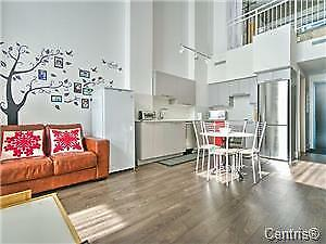 LE PETERSON CONDO405 CONCORD MEZZANINE STYLE ON 2 FLOORS !METRO