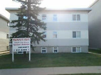 Walking distance to MacEwan University,Kings way Mall