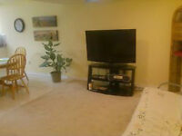 Spacious 2 Bedroom Walkout Apartment - Avail. June 1st
