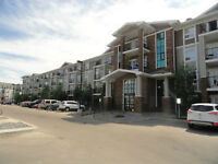1Bdrm Condo in South Terwillegar