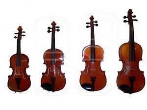 violin, viola, cello, and accessories - low prices, brand new!!
