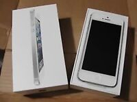 iPhone 5s _ great condition