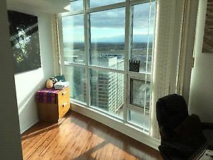 Need a sublet for Dec/January until next January